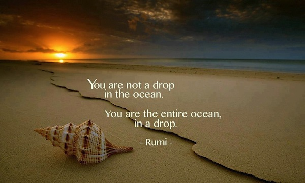 You Are Not A Drop In The Ocean. You Are The Entire Ocean, In A Drop.  - Rumi