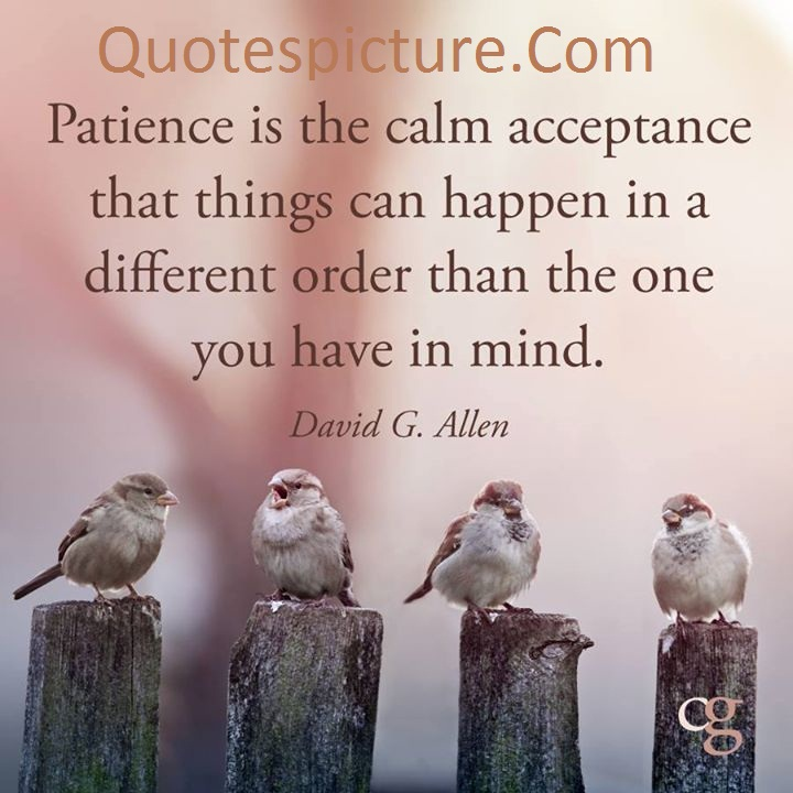 Acceptance Quotes - Patience Is The Calm Acceptance By David G. Allen