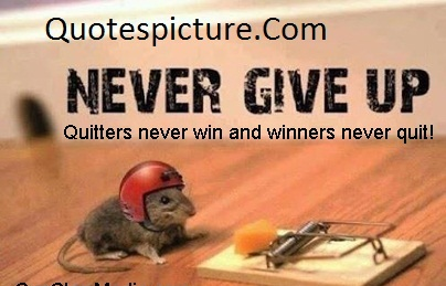 Achievement Quotes - Never Give Up