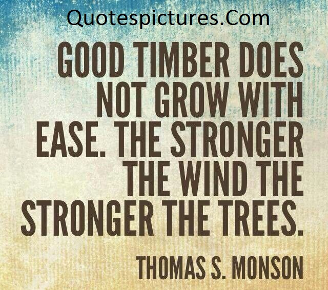 Adventure Quotes - Good Timber Does Not Grow With Ease By Thomas S . Monson