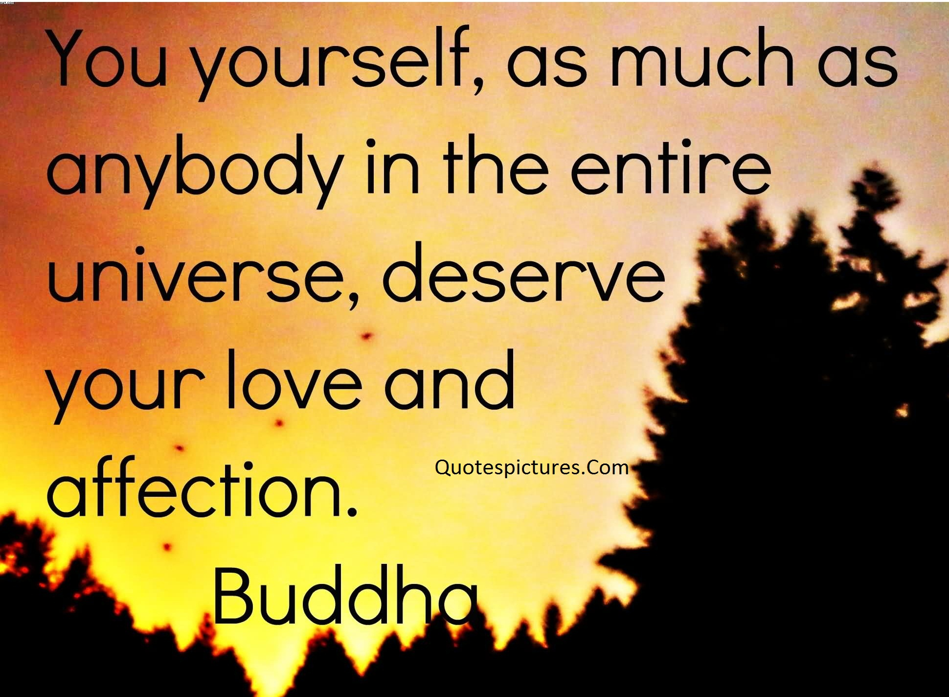 Affection Quotes - The Entire Universe Deserve Your Love And Affection By Buddha