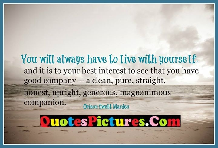 always live interest pure straight