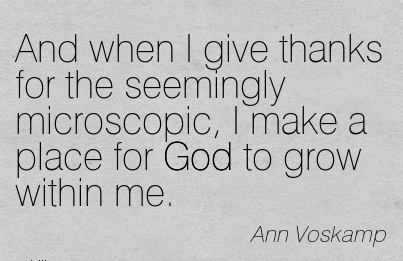 And when I give thanks for the seemingly microscopic, I make a place for God to grow within me.  - Ann Voskamp