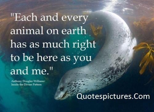 Animal Quotes - Each And Every Animal On Earth By Anthony Douglas Williams