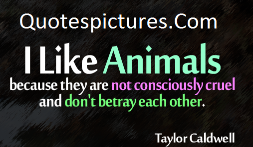 Animal Quotes - I Like Animals By Taylor Caldwell