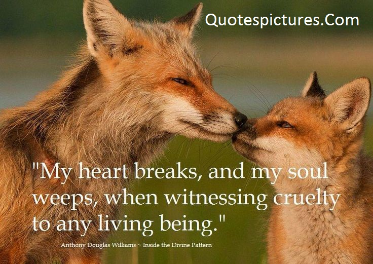 Animal Quotes - My Heart Breaks,And My Soul Weeps By Anthony Dauglas Williams