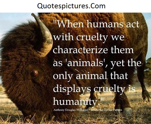 Animal Quotes - When Humans Act With Cruently We Characterize Them As Animals By Anthony Dougles Williams