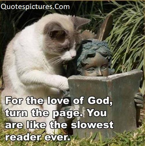 Animal Quotes - You Are Like The Slowest Reader Ever