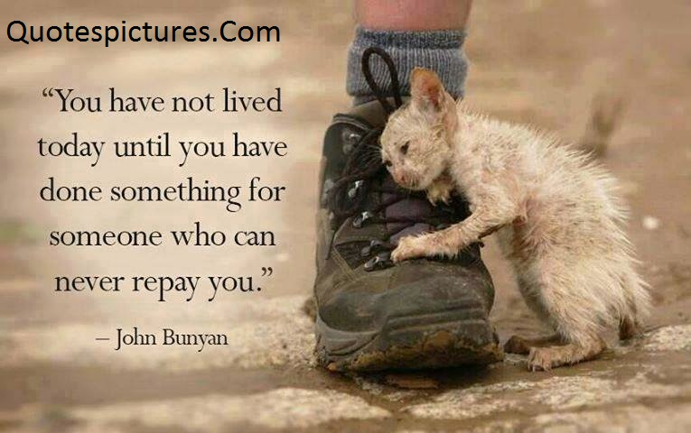 Animal Quotes - You Have Not Lived Today Until You Have Done By John Bunyan