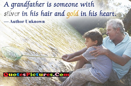 Attractive Grandfather Quote - A Gratherfather  Is Someone With Silver in His Hair And Gold Inh His Heart.