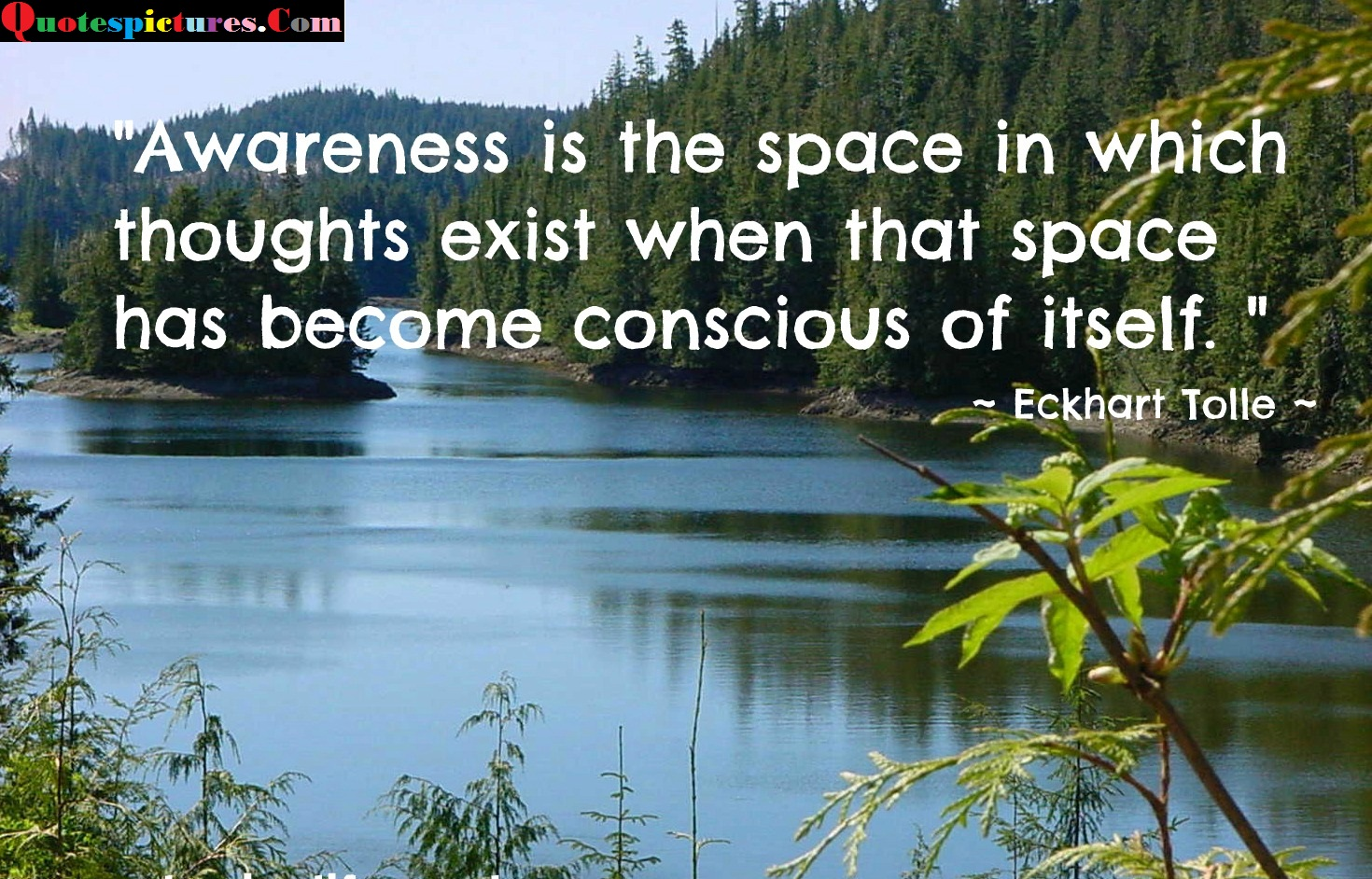 Awareness Quotes - Awareness Is The Space In Which Thoughts Exist By Eckhart Tolle
