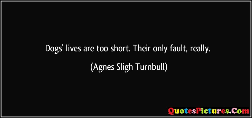 Awesome Dog Quote - Dogs Lives Are Too Short Their Only Fault Really - Agnes Sligh Turnbull