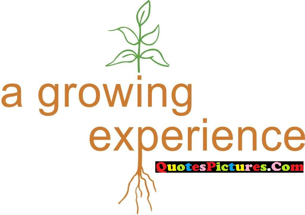 Awesome Experience Quote - A Growing Experience.