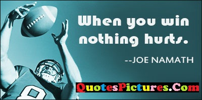 Awesome Victory Quote - When You Win Nothing Hurts.