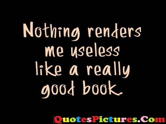 Best Ever Fabulous Computer Quotes - Nothing Renders Me Useless Like A Really Good Book.