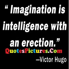 Best Innovative Imagination Quote - Imagination Is Intelligence With An Erection. - Victor Hugo
