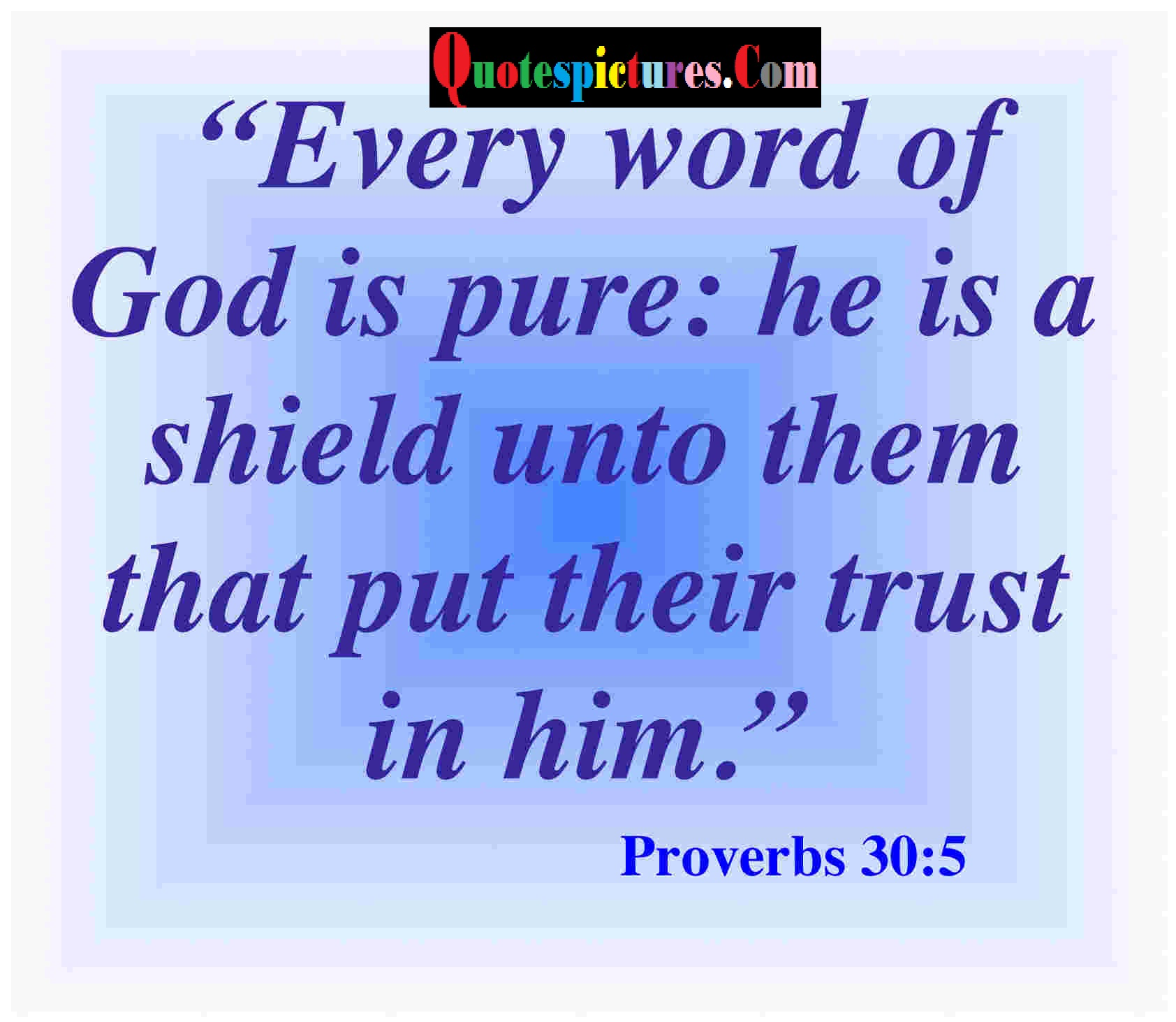 Bible Quotes - Every Word Of God Is Pure By Proverbs