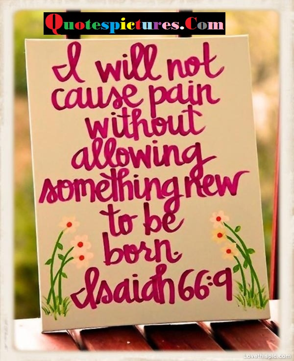 Bible Quotes - I Will Not Cause Pain Without Allowing