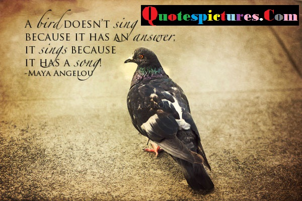 Birds Quotes - A Bird Does Not Sing Because It Has An Answer By Maya Angelou