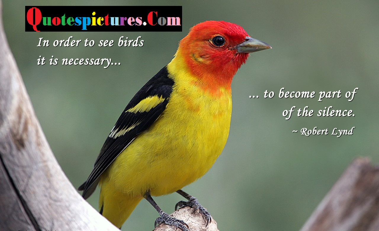 Birds Quotes - Birds Becaome A Part Of Silence By Robert Lynd