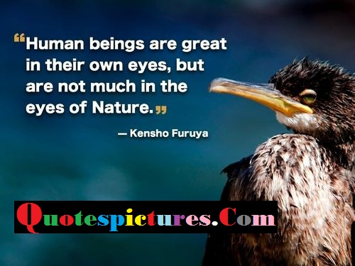 Birds Quotes - Human Beings Are Great In Their Own Eyes By Kensho Furuya