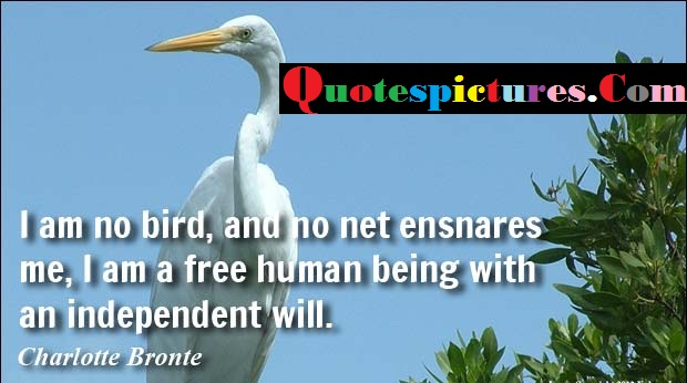 Birds Quotes - I Am A Free Human Being With An Independent Will By Charlotte Bronte