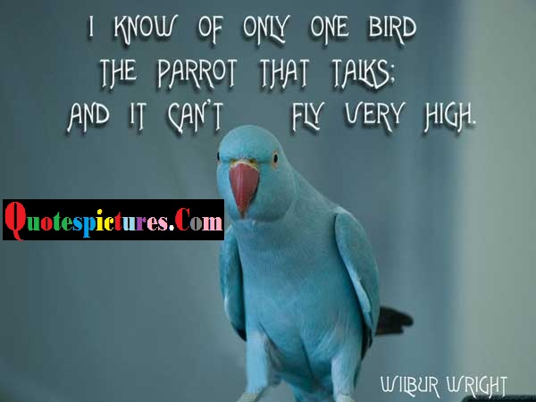 Birds Quotes - I Know Of Only One Bird The Parrot That Talks By Wibur Wright