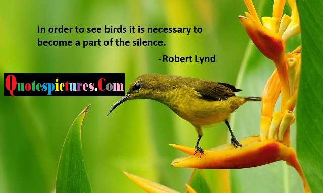 Birds Quotes - In Order to See Birds A Part Of The Silence By Robert Lynd