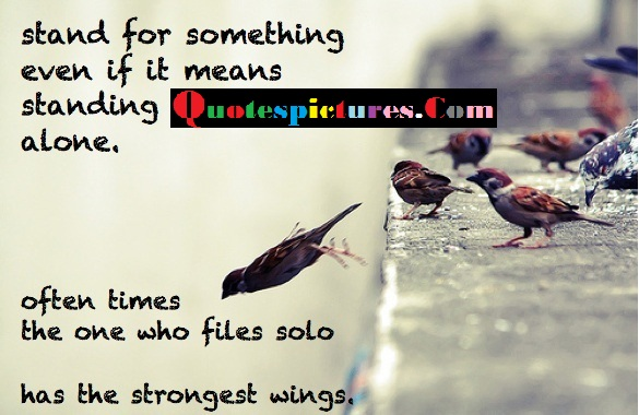 Birds Quotes - Stand For Something Even If It Means Standing Alone
