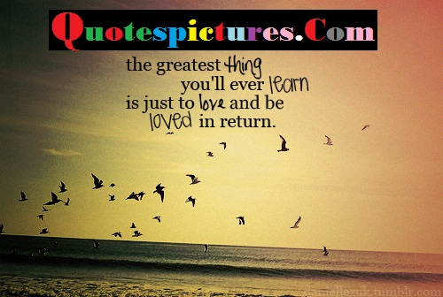 Birds Quotes - The Greatest Thing You Will Ever Learn