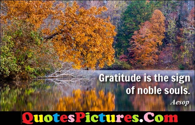 Brillient Debt Quote - Gratitude Is The Sign Of Noble Souls. - Aesop