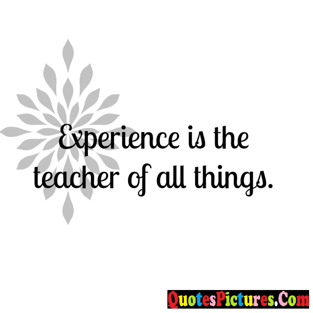 Brillient Experience Quote - Experience Is The Teacher Of All Things.