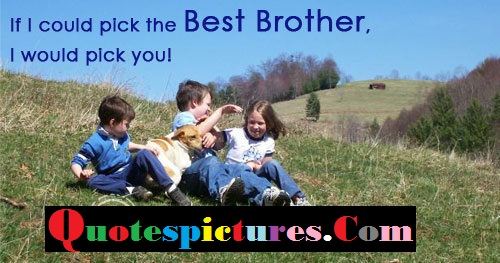 Brother Quotes - If I Could Pick The Best Brother