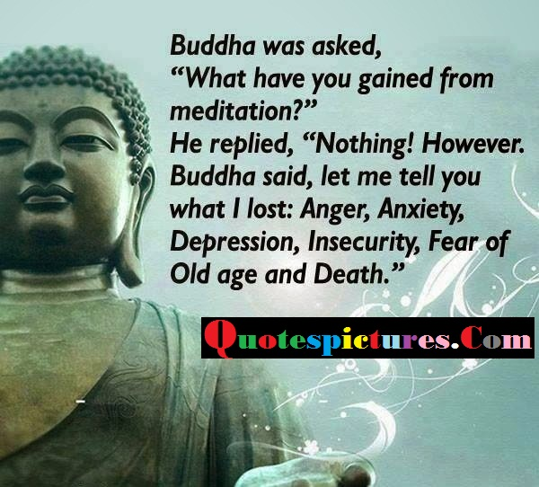 Buddhist Quotes - Buddha Was Asked What Have You Gained From Meditation