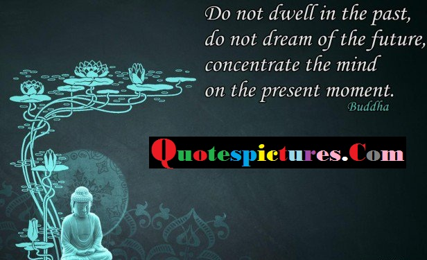 Buddhist Quotes - Do Not D Well In The Past Do Not Dream Of The Future By Buddha