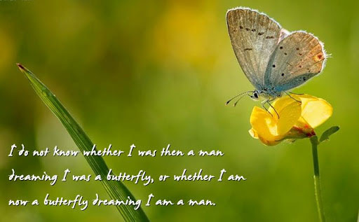 Butterfly Quotes - I Am Now A Butterfly Dreaming I Am A Man