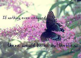 Butterfly Quotes - If Nothing Ever Changed There Would Be Not Butterflies