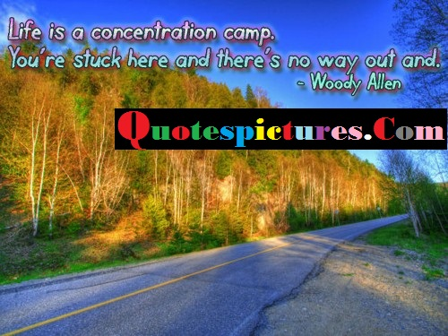 Camping Quotes - Life Is Concertration Camp By Woody Allen