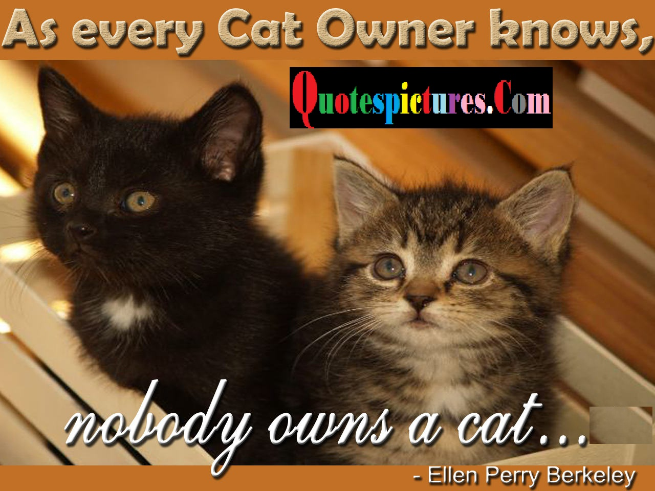Cat Quotes - As Every Cat Owner Knows By Elien Perry Berkeley