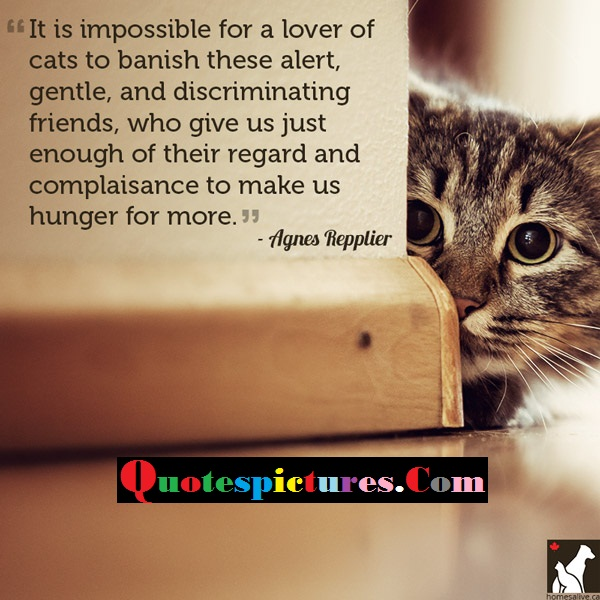 Cat Quotes - It Is Impossible For A Lover Of Cats To Banish These Alert By Anges Repplier