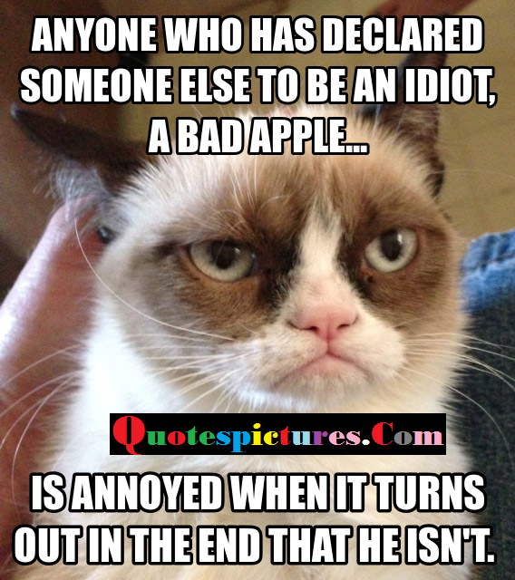 Cat Quotes - Someone ELse To Be An Idiot A Bad Apple