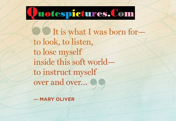 Change Quotes - It Is What I Was Born For To Look To Listen To Lose Myself By Mary Oliver