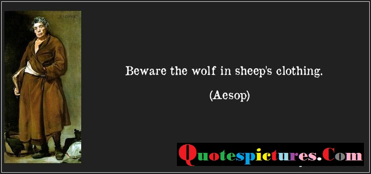 Clothing Quotes - Beware the Wolf In Sheeps Clothing By Aesop