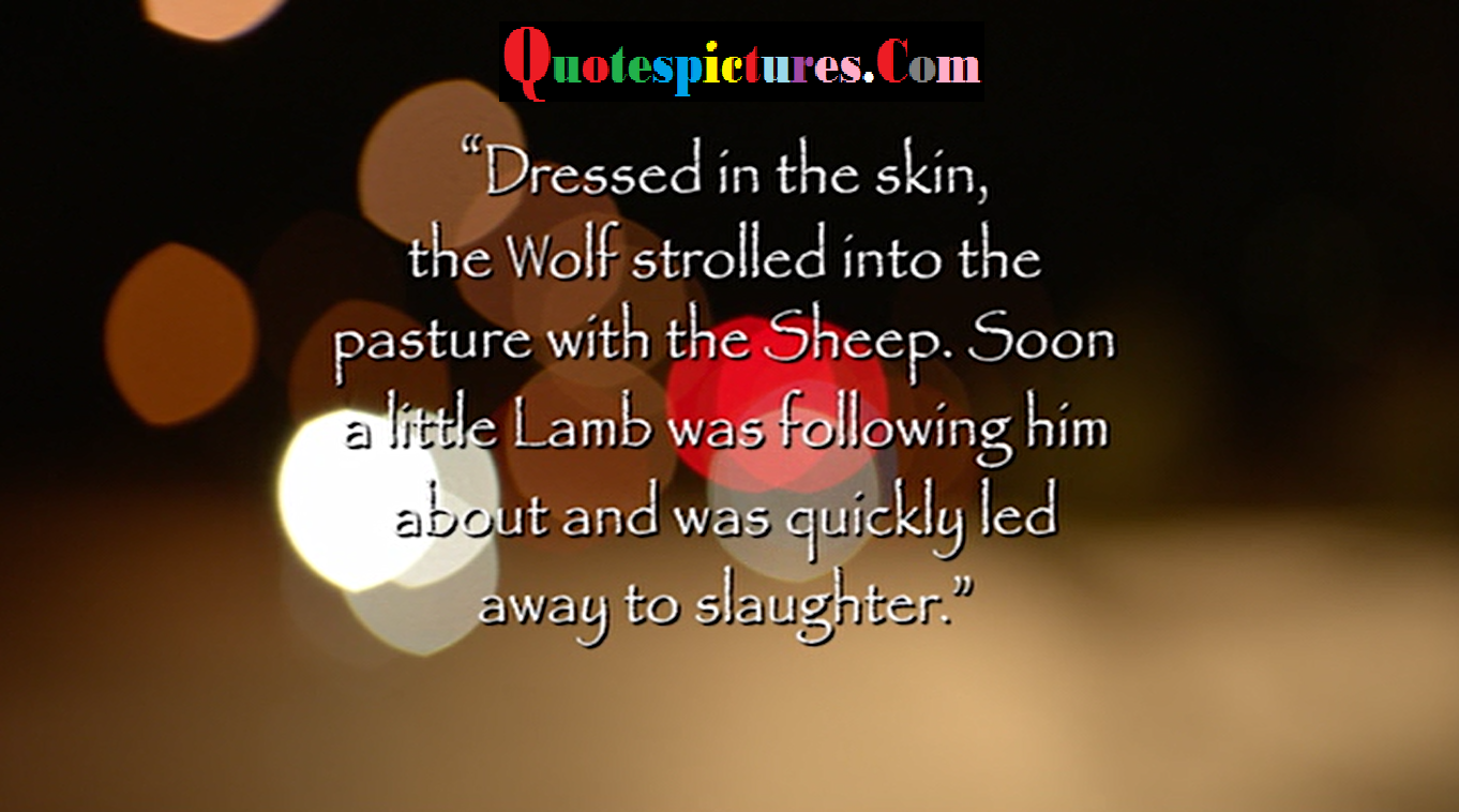 Clothing Quotes - Dressed In The Skn The Wolf Strolled Into The Pasture With The Sheep