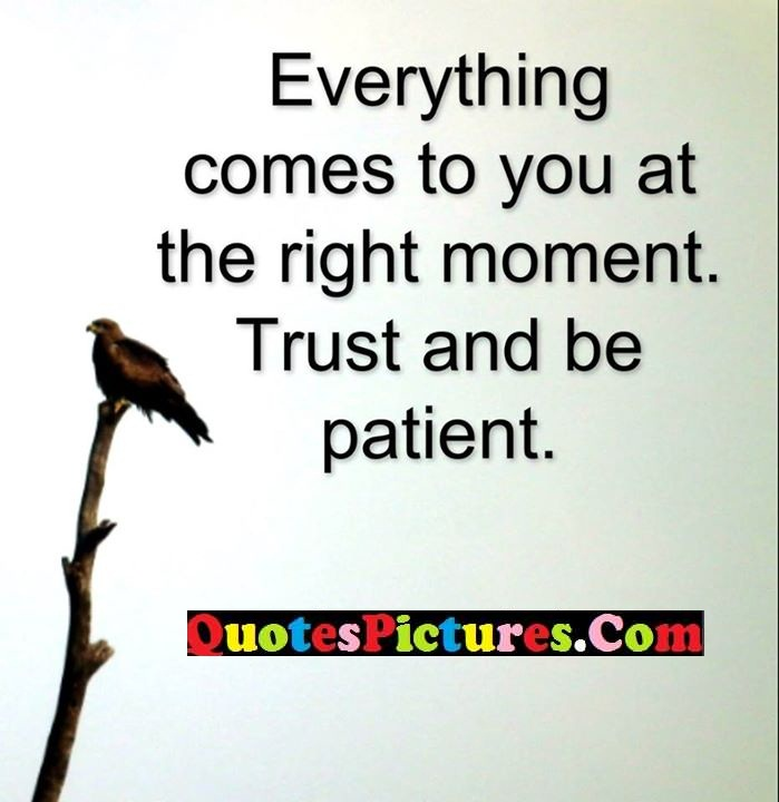 comes right moment trust patient