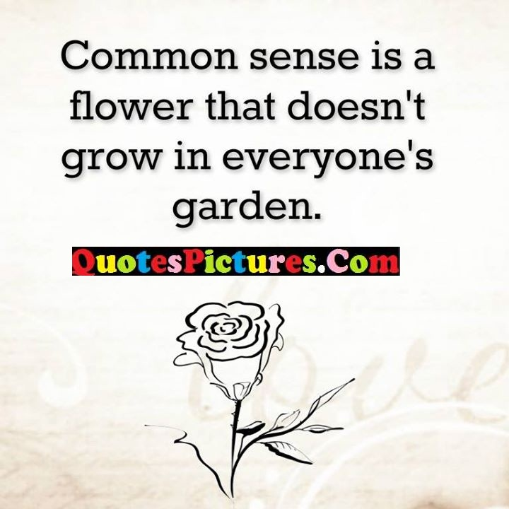 common sense flower grow garden