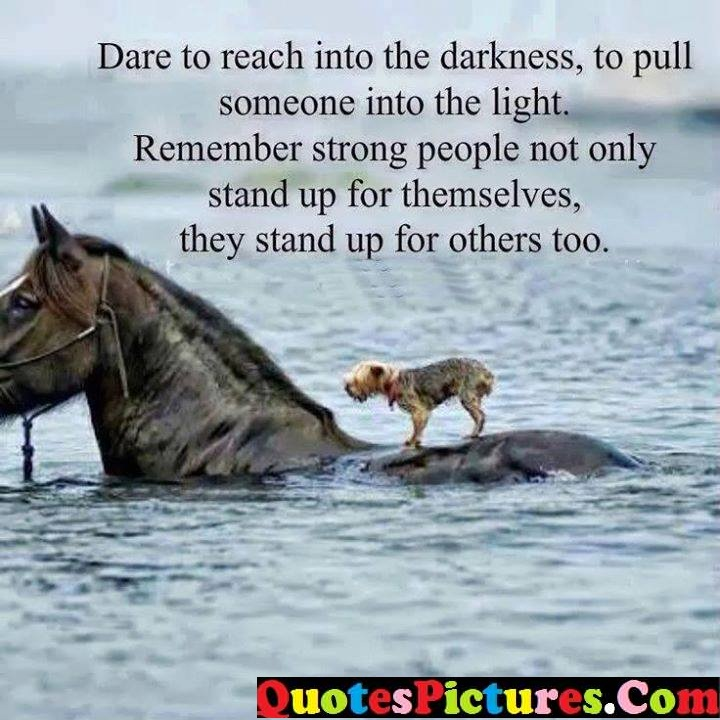 dare light remember others