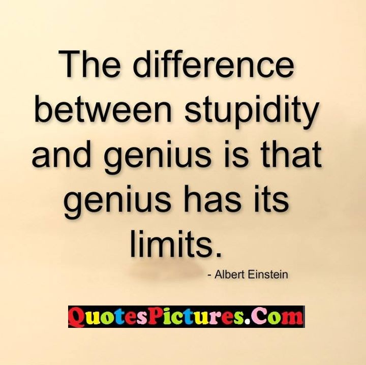 difference stupidity genius limits