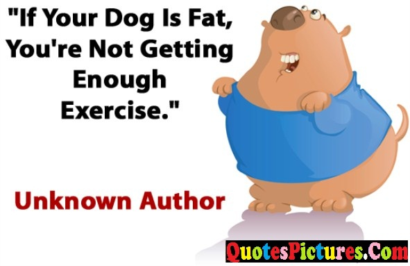 Exercise Quote - If You Dog Is Fat, You're Not Getting Enpugh Exercise. - Unknown Author