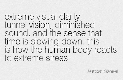 extreme visual clarity, tunnel vision, diminished sound, and the sense that time is slowing down. this is how the human body reacts to extreme stress.